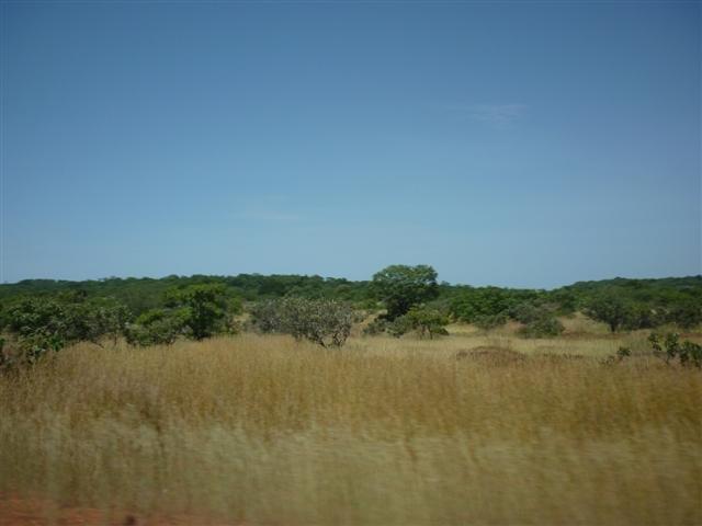 paysage5.jpg