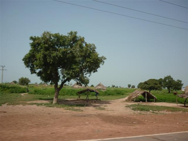 village51.jpg